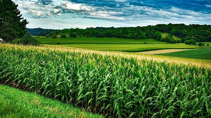 Adoria - Comprendre la Loi Alim > Comment permettre aux agriculteurs d'avoir un revenu digne en...