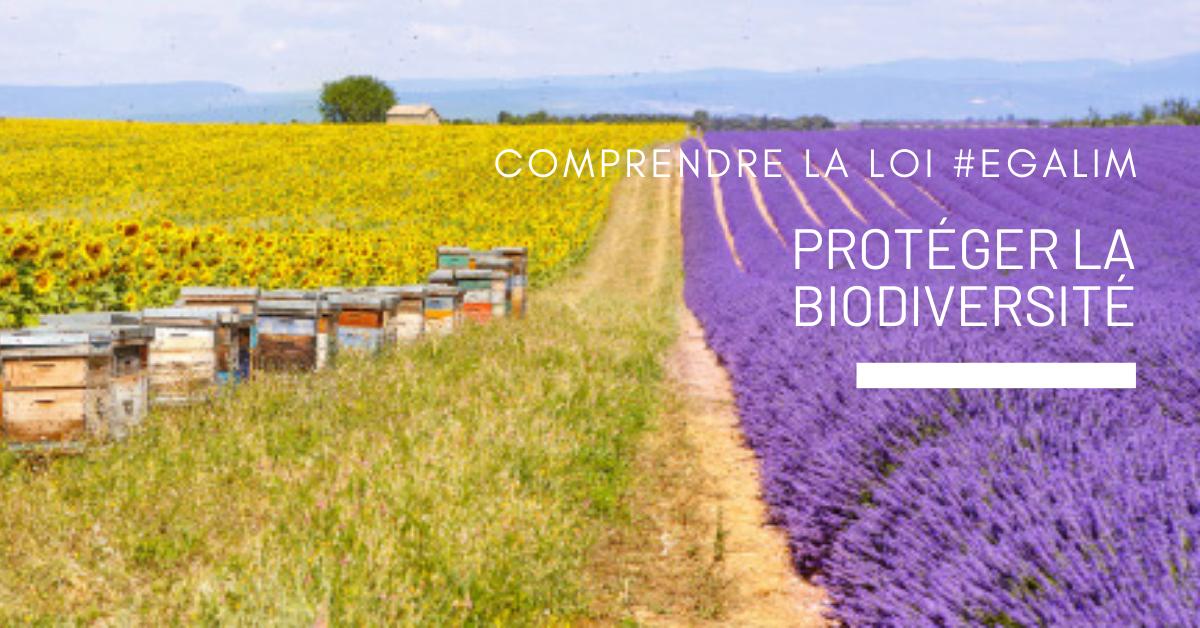 Adoria - Comprendre la loi Alim > Protéger la biodiversité