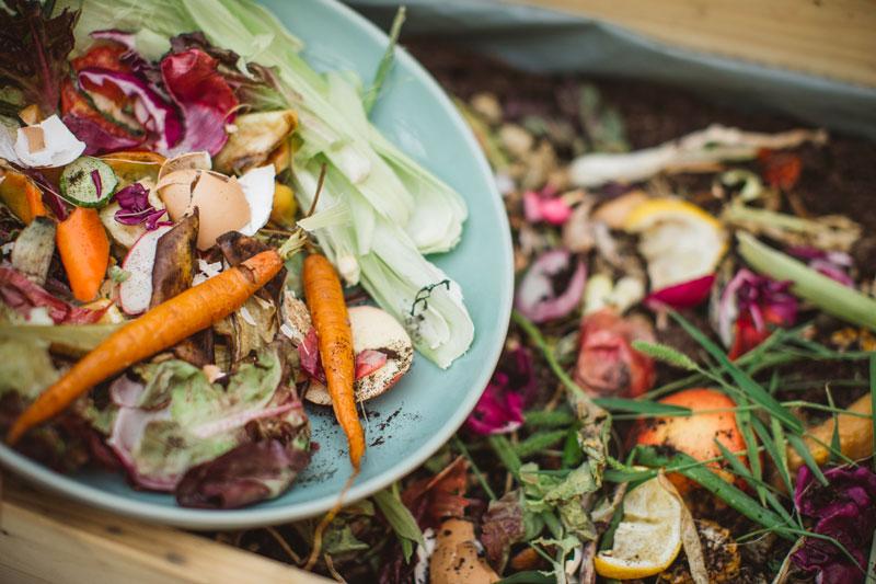 Adoria - Réussir sa lutte contre le gaspillage alimentaire en restauration collective