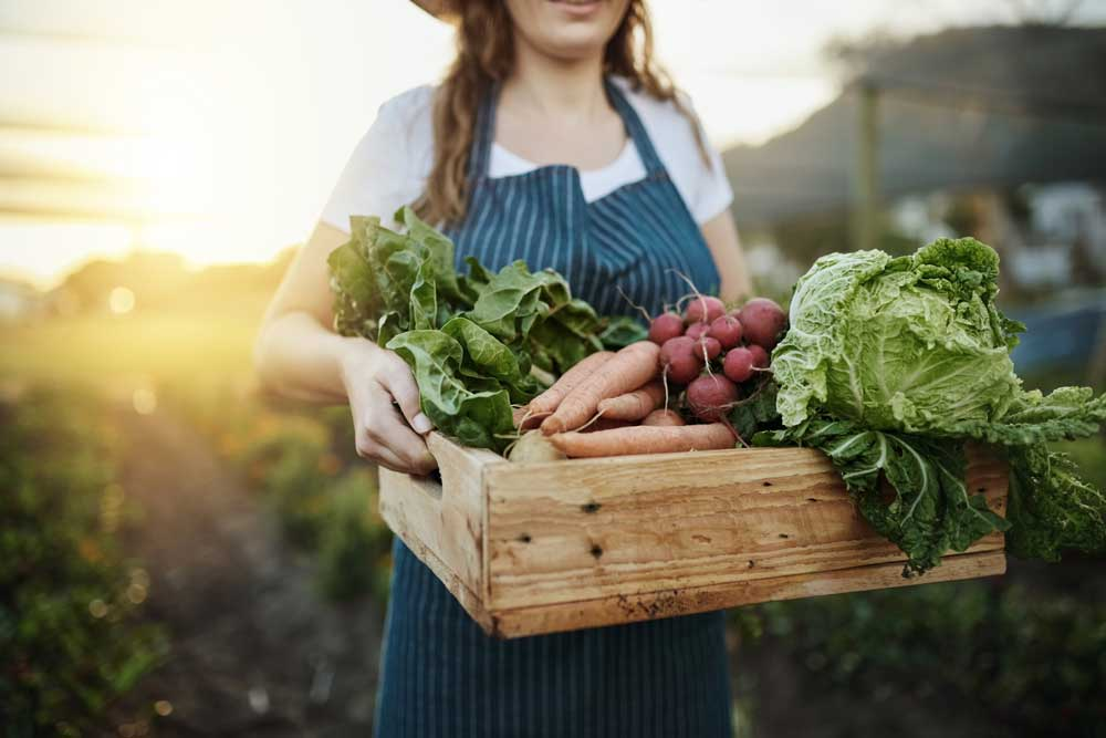 Adoria - Privilégier les produits locaux européens dans votre restaurant collectif