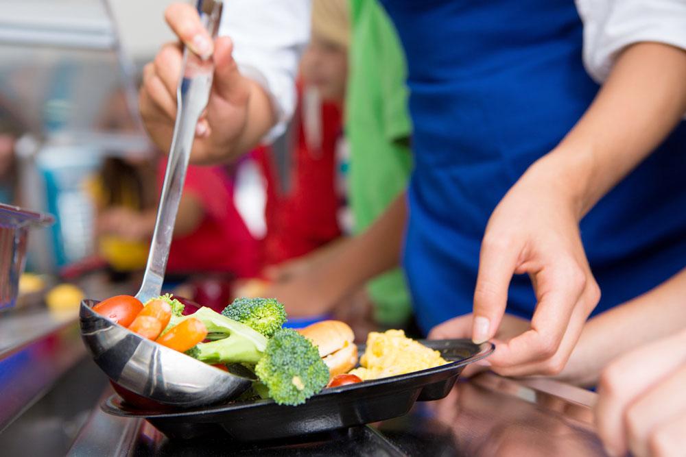 Adoria - Des approvisionnements bio et de qualité en restauration collective, c'est possible !